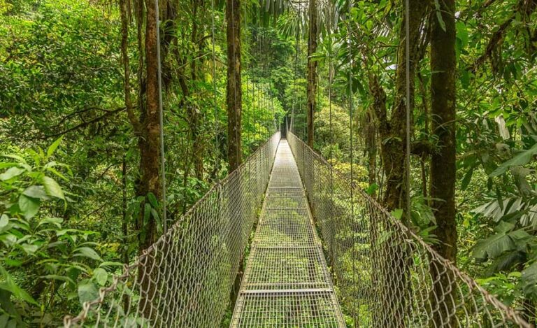 Why Visit Costa Rica: Here We Have the Top 10 Reasons