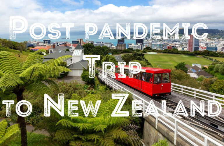 Plan Your First Post-pandemic Trip to New Zealand in 2021